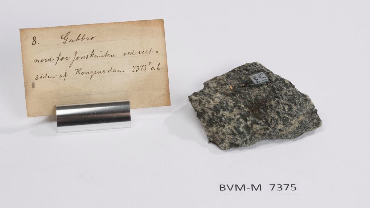 Etikett på prøve: 8  Etikett i eske: Gabbro nord for Jonsknuten ved vest- siden af Kongensdam 2375' o.h.