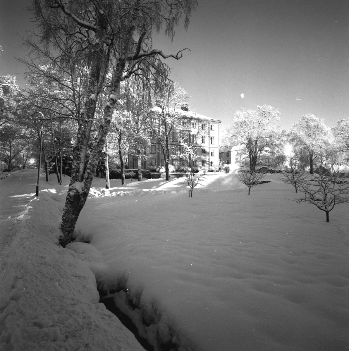Holmsund en vårvinterdag. Korsnäs AB. Den 21 mars 1961