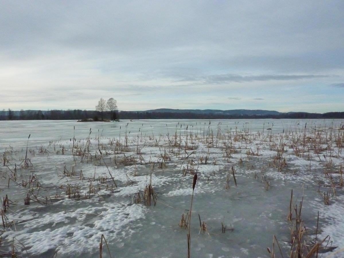 Foto av vinterstemning i Monsrudvika (Foto/Photo)