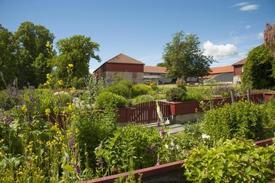 Fra inne i giftplanteavdelingen; porten synes midt i bildet og Storhamarlåven i bakgrunnen. (Foto/Photo)