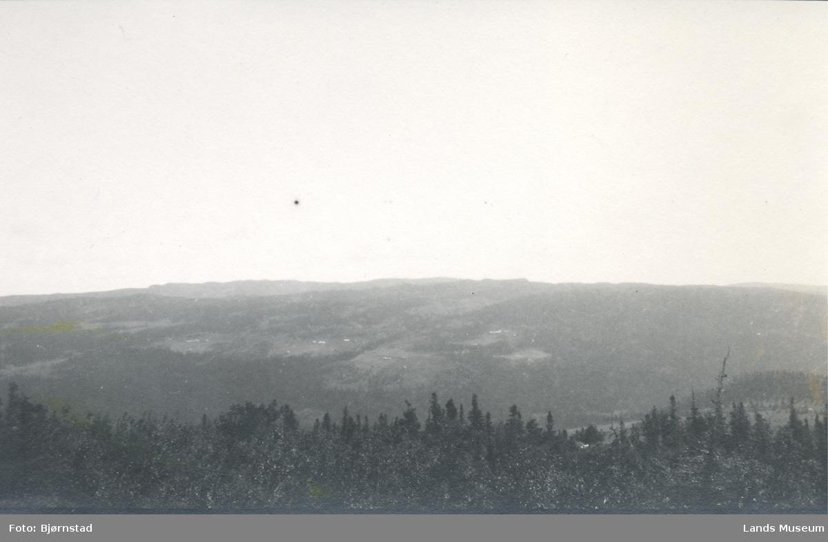 Blestern sæter, sett fra Bjønnhaugen