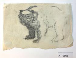 Bjørn [Tegning]