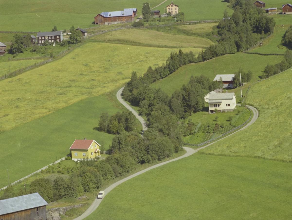 Parti fra Bødalen, to bolighus med to gårder bak, Bødalen, Vestre Gausdal