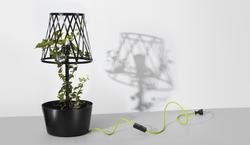 Green lamp by Siesta