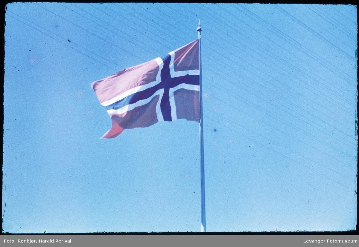 Norsk flagg, første fremkalte bilde av Agfacolor av Renbjør.