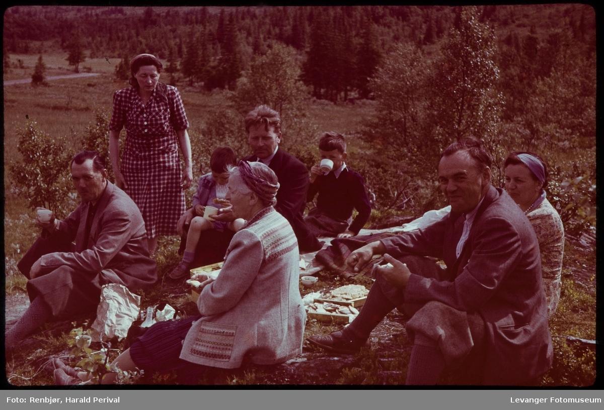 På fjelltur i regi av Kjøpmannsforeningen.