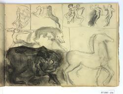 Hest og mann med skjegg [Tegning]