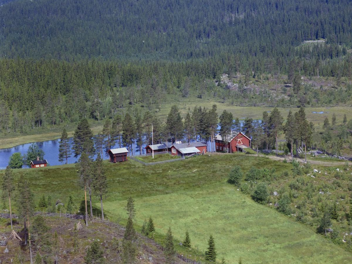 Myggbukta, Lomtjern, Mesnasagvegen 460. vann, vatn, innsjø, skog, bygninger, gårdsbruk, kulturlandskap