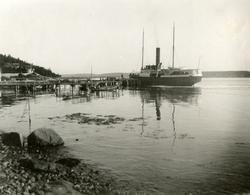 D/S 'Beta' (Ex. Patriot)(b.1869, Reiherstieg Schiffswerfte &