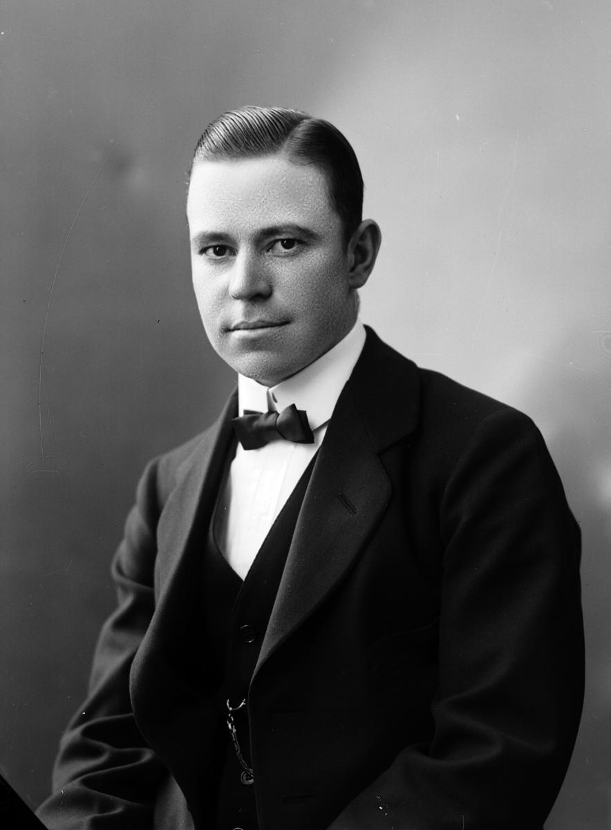 Herr Lundmark