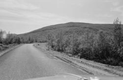 Utsjok-tur, Finland. Fotografert i august 1969. Asfaltvei i