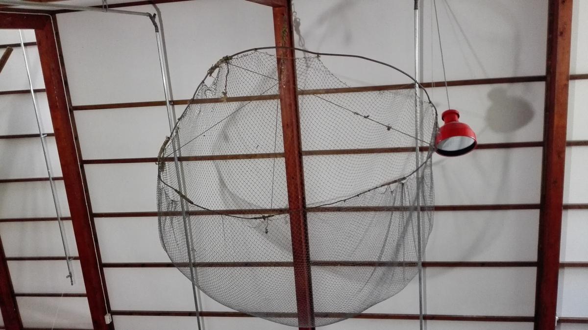 """Glip (stor håv til å søkka ned i vatn). EIn garnpose ca 1,40 m djup er festa til ein jarnring, ca 2,10 meter i diameter. I ringen er festa tau fire stader. Dei fire taua er knytt saman i frå dette punkter er festa eit tjukkare tau til å senka og heva glipen med.  Maskestorleik 2 cm (frå knute til knute)  Store Norske Leksikon har denne beskrivinga av glip: """"Glip, stor håv til fangst av småfisk, hummer og krabbe på relativt grunt vann. Til et tønnebånd er festet en pose av fiskegarn. Fra båndet går tre like lange, solide snører opp til en knute som er festet til et stykke kork. Til korkstykket er festet et tau til å trekke glipen opp med. Tvers over håven spennes et snøre for feste av agn.""""  Det er uvisst om denne glipen har hatt kork, eller snøre for feste av agn. Agn kunne også leggjast på botnen av garnposen."""