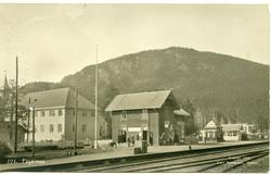 Postkort med motiv av Fagernes Hotell og Fagernes jernbanest