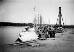 Linköpings hamn, fiskebåtar och folk vid kajen.Pålningsarbe