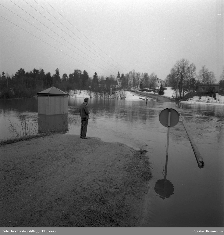 Sättnaån har svämmat över vid Ånäsparken efter den snörika vintern 1966. En man betraktar förödelsen och i bakgrunden syns Sättna kyrka
