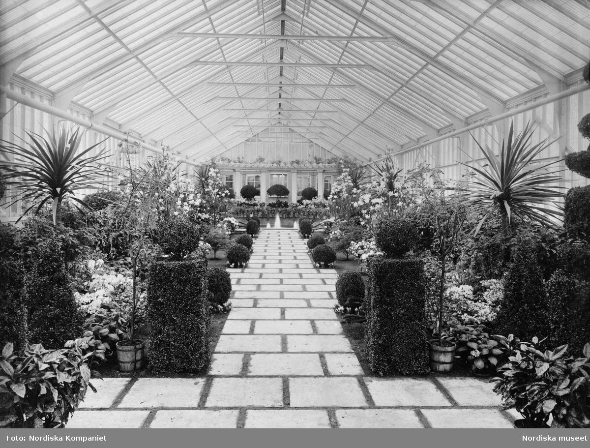 """""""NK:s trädgårdar i Haga. Utställningshallen."""""""
