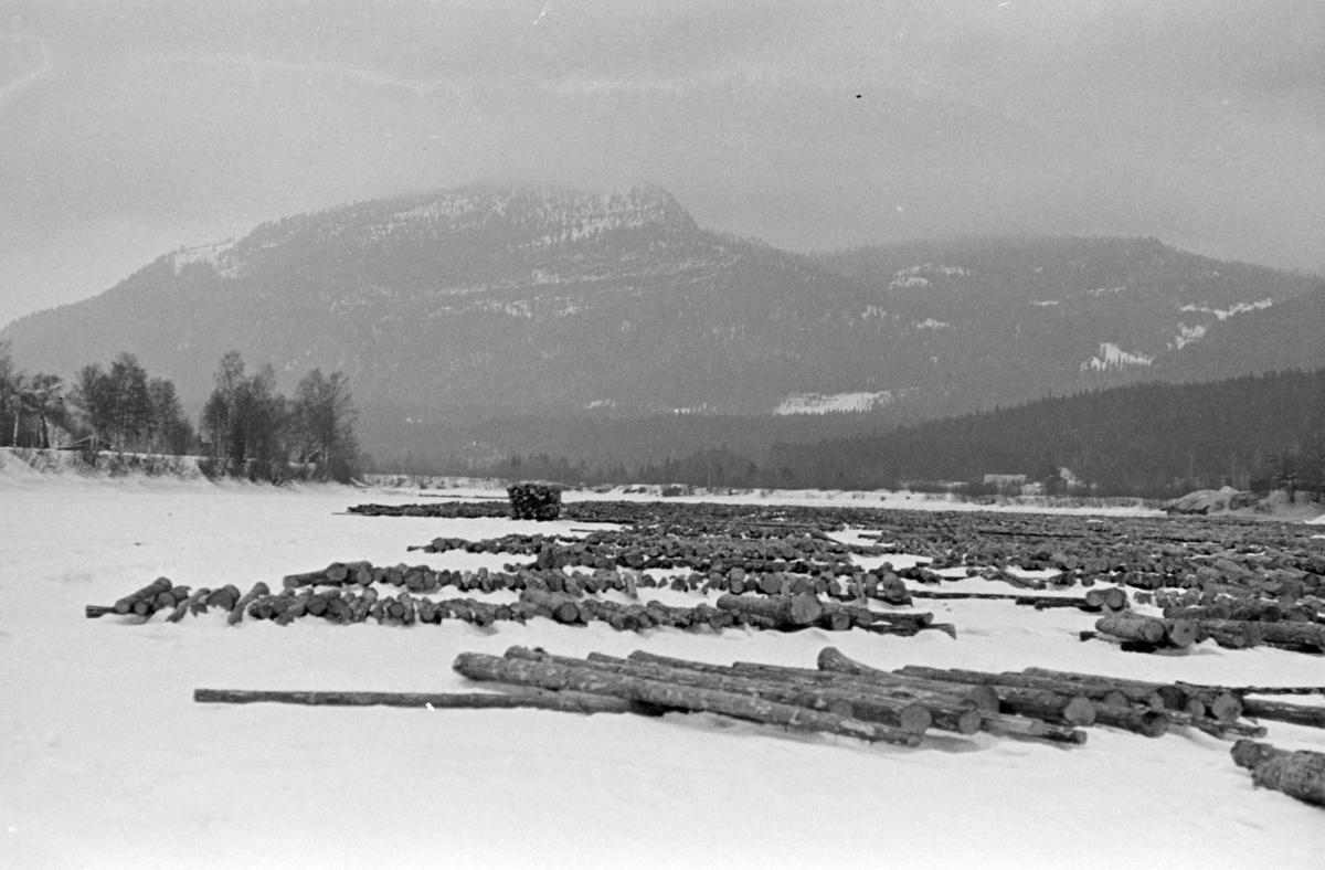 Tømmervelte, vinter, Glomma,  ukjent Østerdal