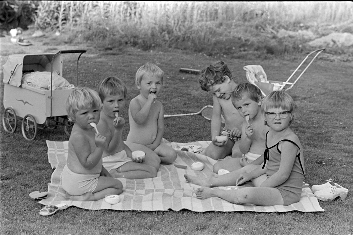 Barn, iskrem, pledd, sommer,barnevogn.