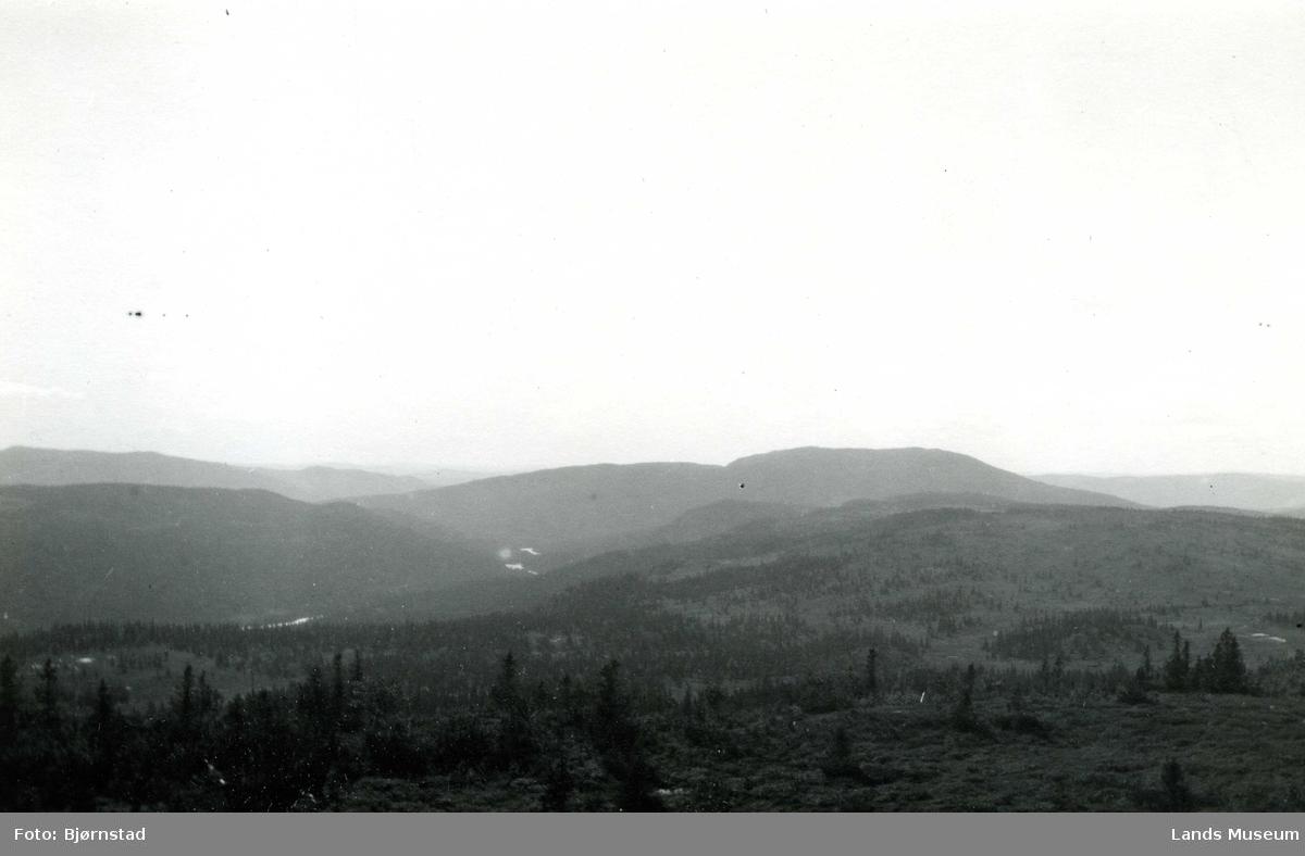 Dokkadalen bak Nylsfjellet