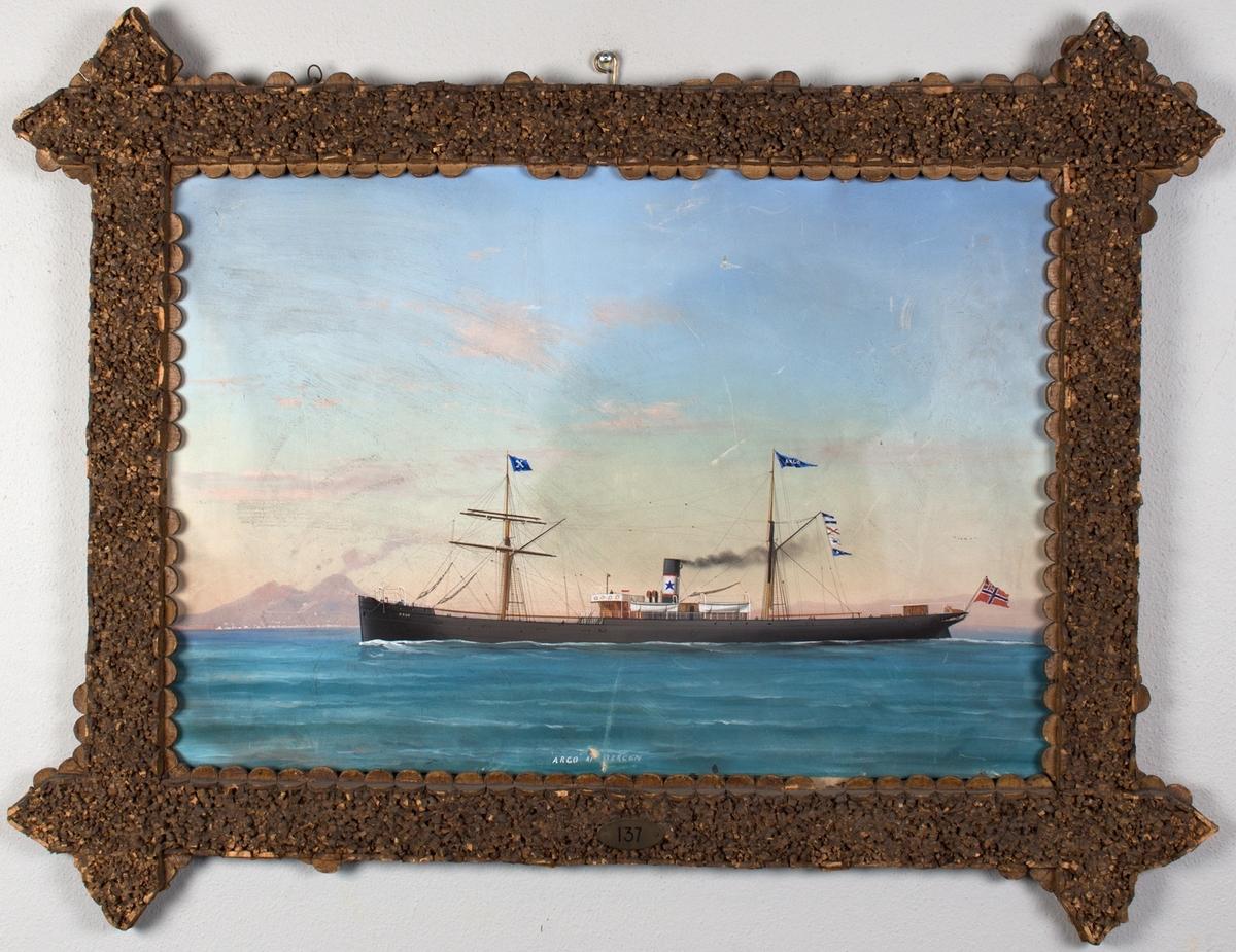 Skipsportrett av DS ARGO under fart utenfor Napoli. Vulkanen Vesuv sees i bakgrunnen. Fører vimpel med skipets navn samt unionsflagg akter.