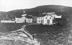 Gården i Harstadhamn.