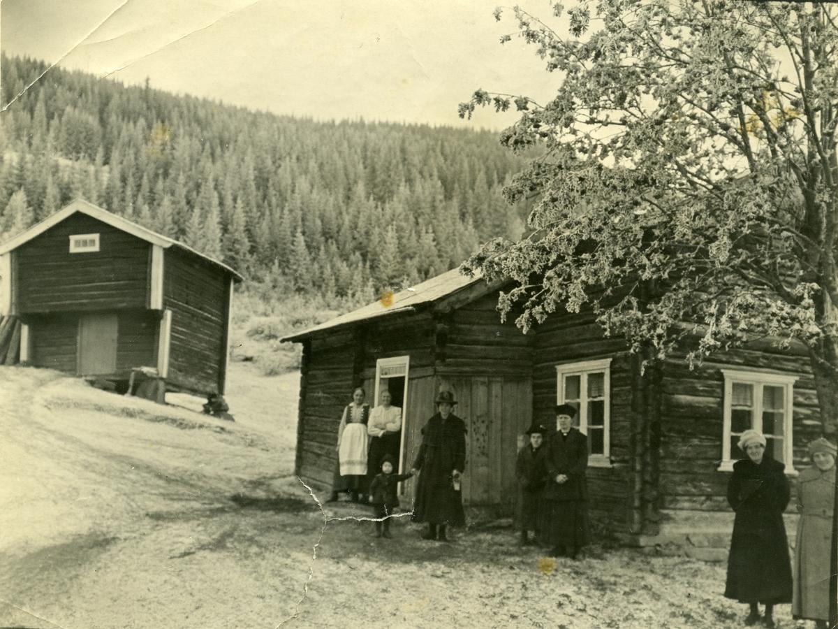 Svartlie, Reinli. 1919.