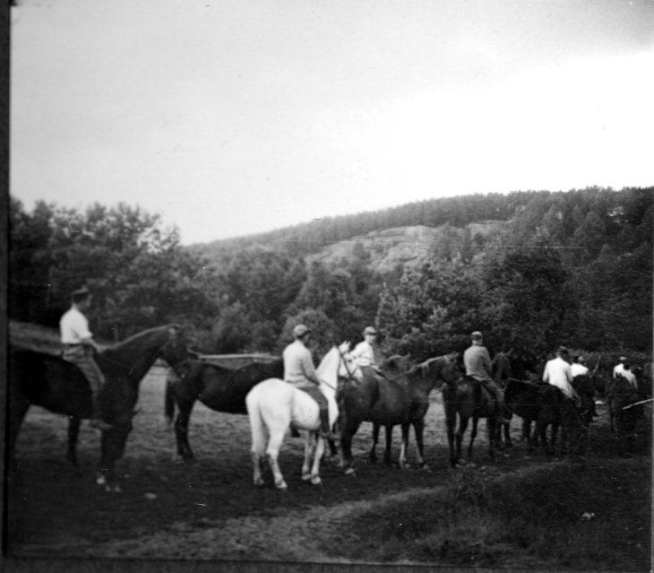 Vattning av hästar. Tånga Hed.
