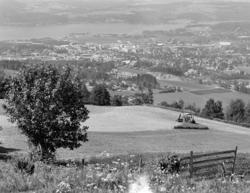 Utsikt mot Brumunddal fra Hangenholen, Hedmarkslandskap, Rin