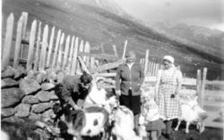 Liastølane i Hemsedal i 1943. Frå venstre: Hans Hansen, Mag