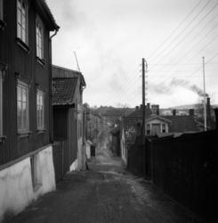 Solhauggata. Rodeløkka. Mars 1949