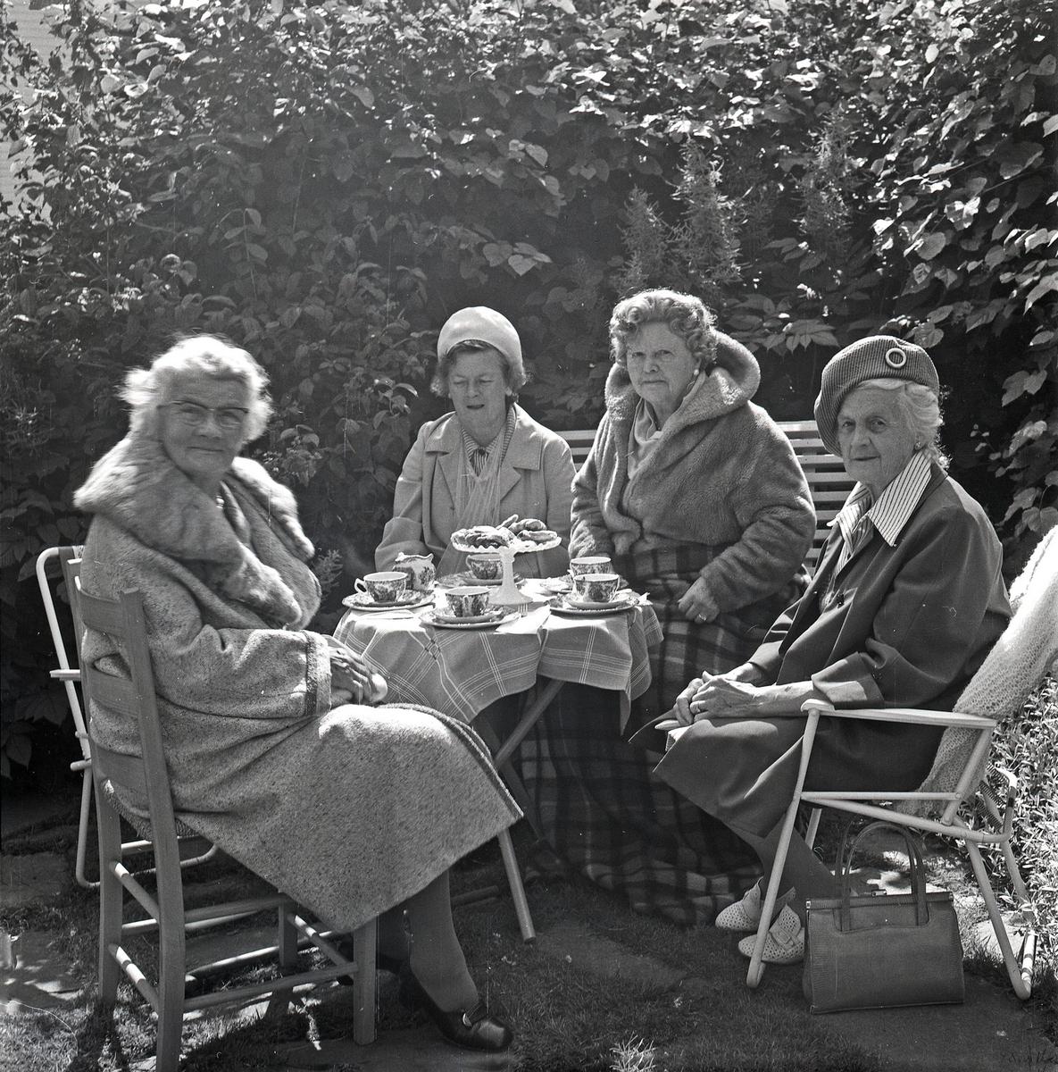 Vesteveien 35, Haugesund 4 damer, kaffe og kaker i hagen