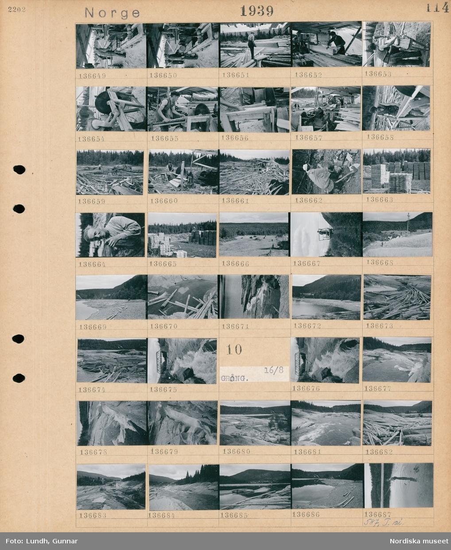 Motiv; Norge, cykel + bussfärd till Grong; Män arbetar på ett sågverk, en kvinna skalar potatis utomhus, staplar med bräder, porträtt av en man, landskapsvy med skog och en åker med höhässjor, timmer ligger på en strand, en bro över en fors.  Motiv: Norge, Grong; En bor över en fors, en fors, landskapsvy med skog och en fors, en person fiskar.
