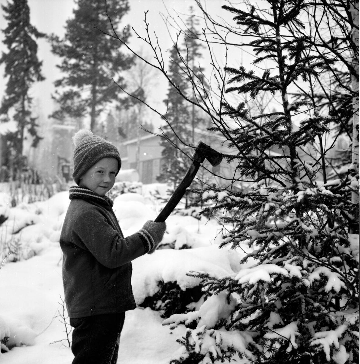 Mållångstad, Erik Lindblom, Albert Lindblom, Jörgen Söder, 26 Nov 1965