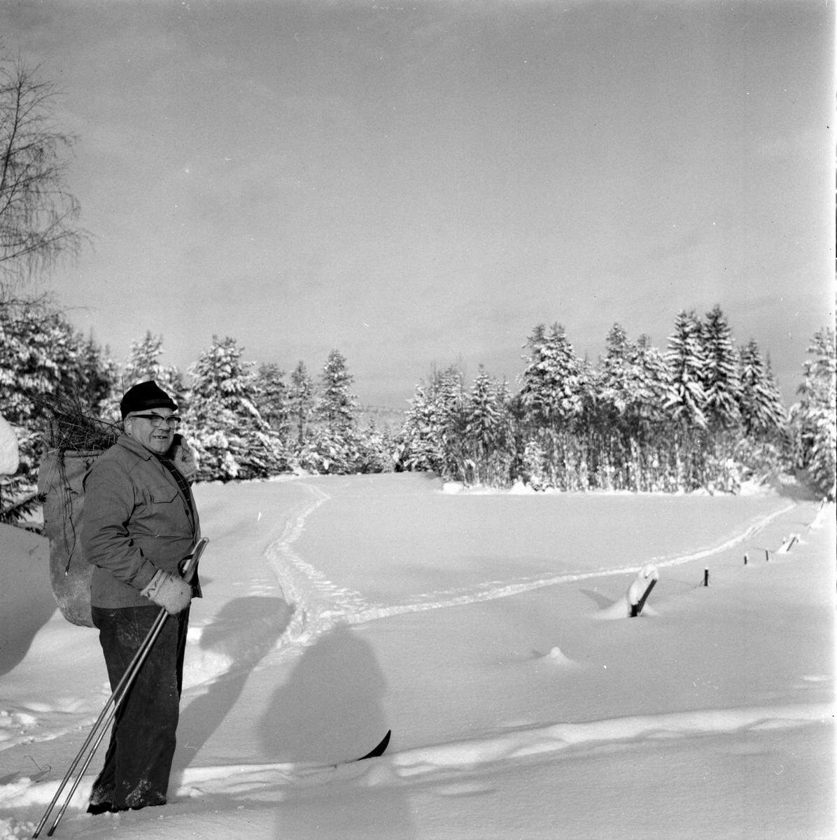 Rådjurshjälp sjuk get. Växsjö Einar Brungs Röste 7/2-1966
