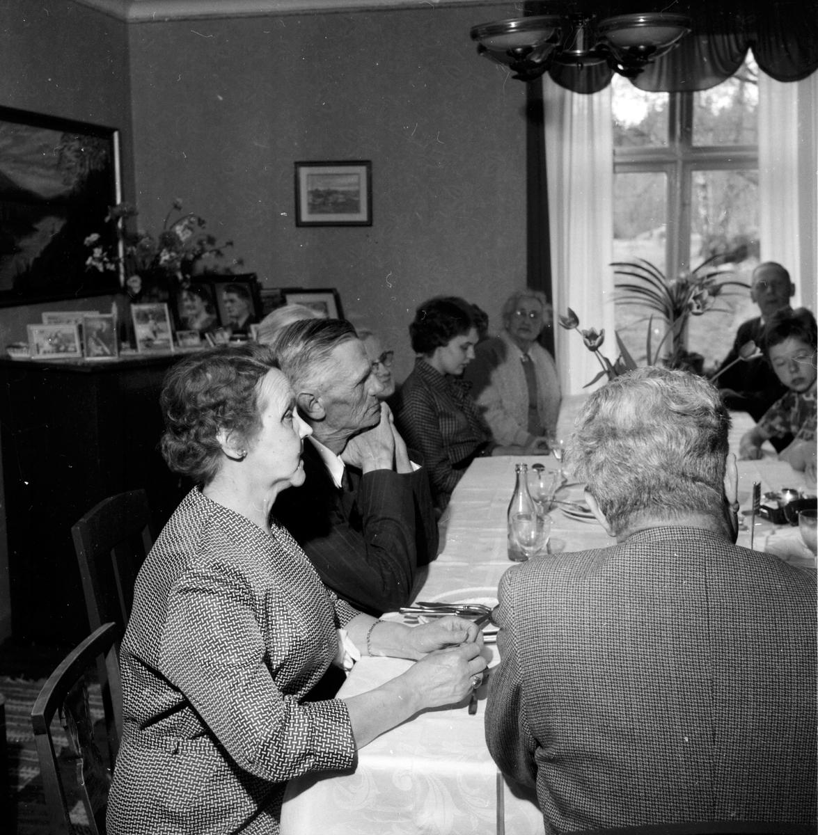 Lövhaga Rehn släktträff. 20/5-1960