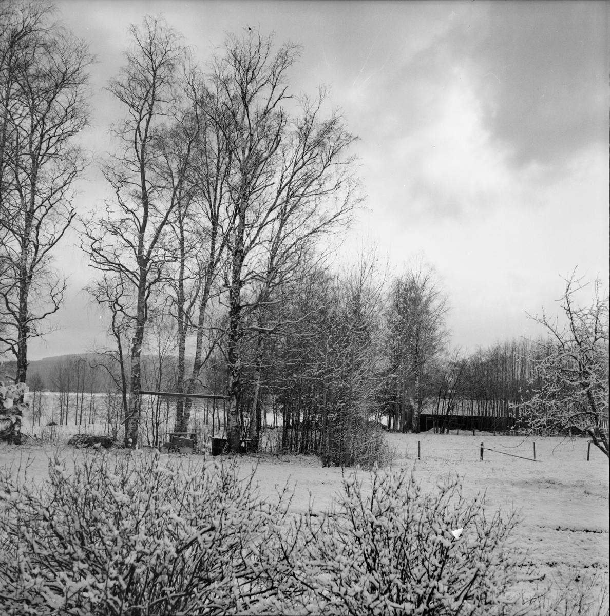 Arbrå, Hägersta, 1971