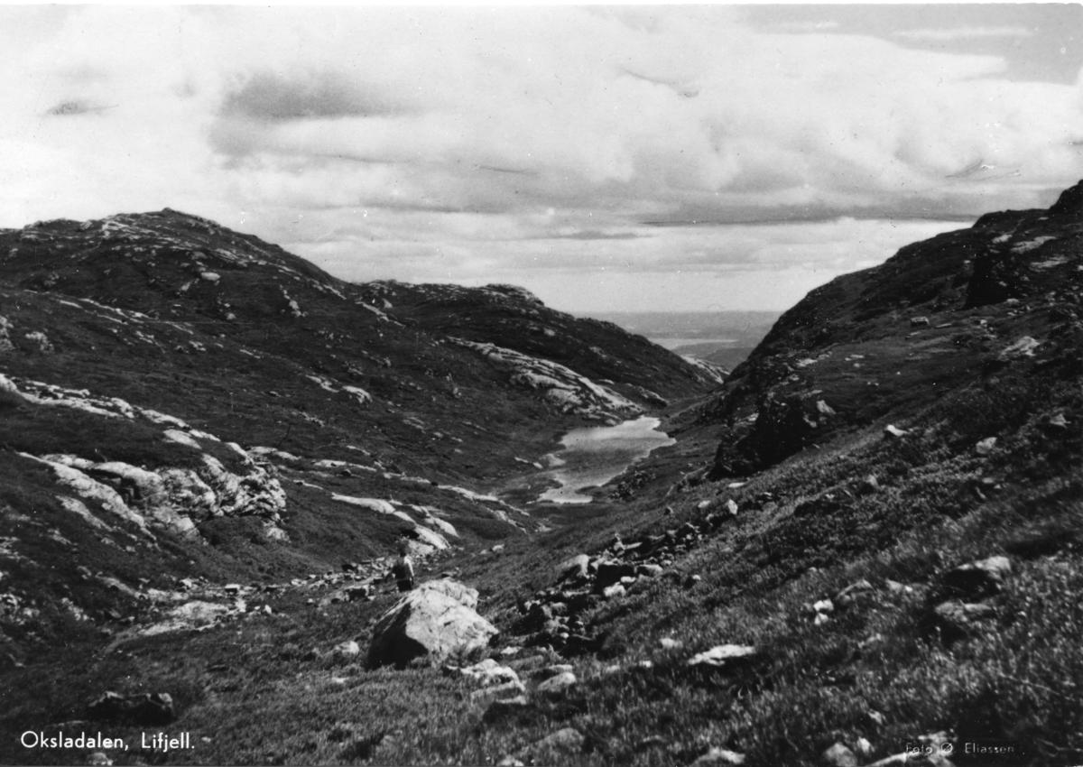 Oksladalen Lifjell
