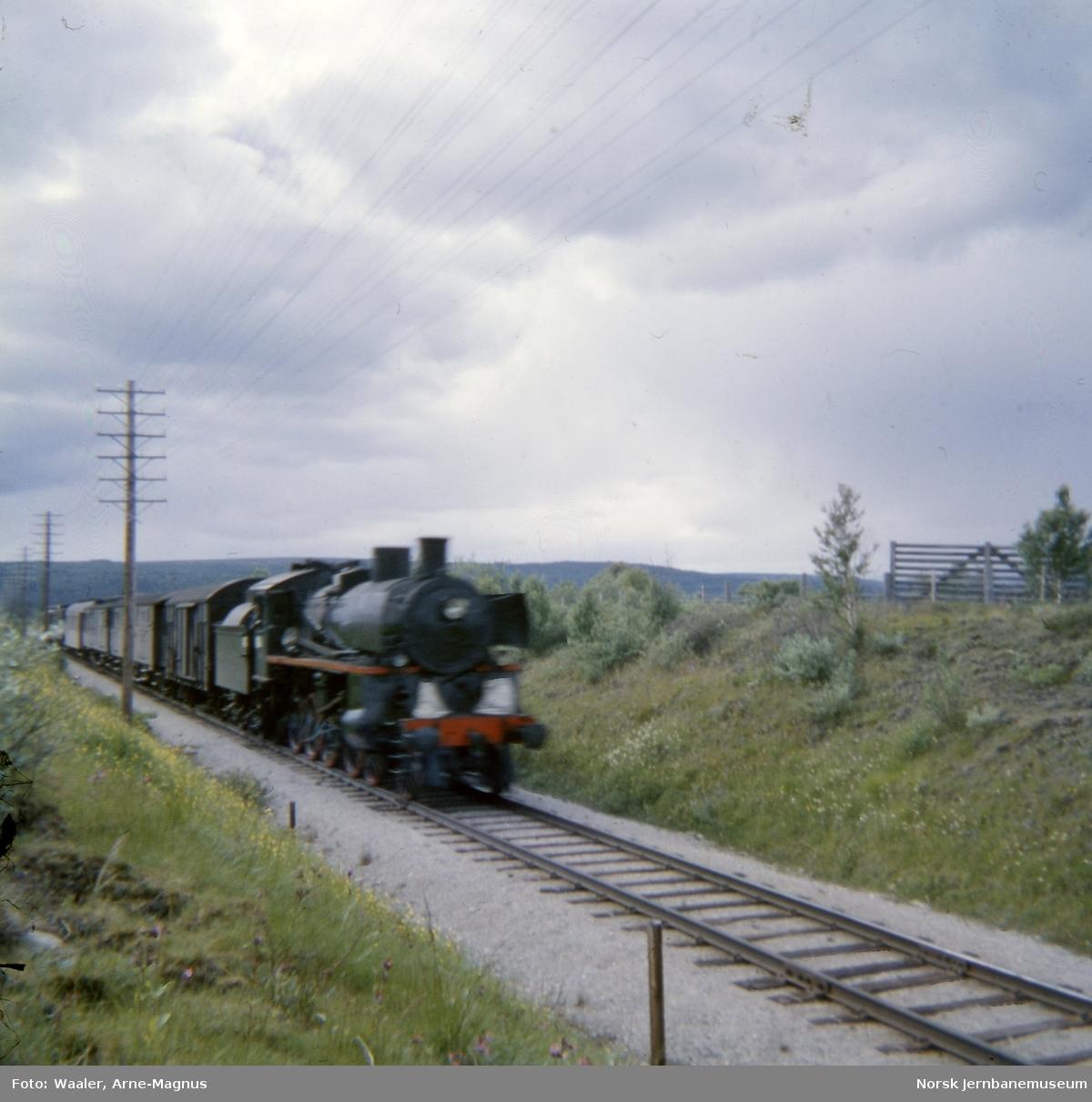 Damplokomotiv type 26c 411 med nordgående dagtog 301 ved Røros