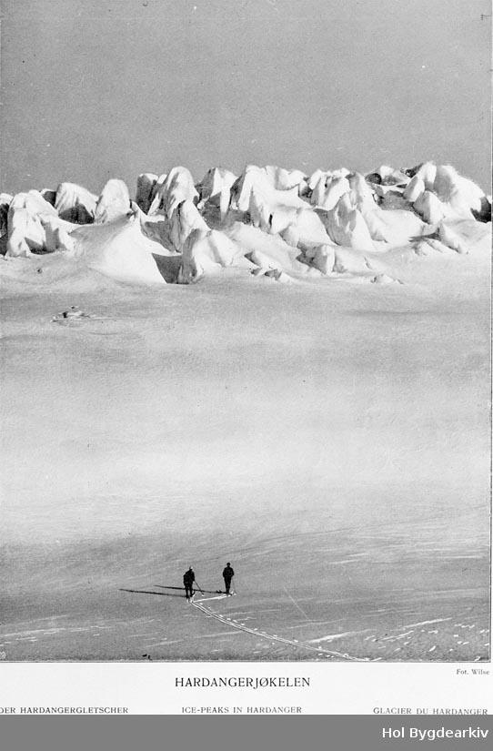 Isbre, fjellandskap, Hardangerjøkulen, blåisen, skiløyparar