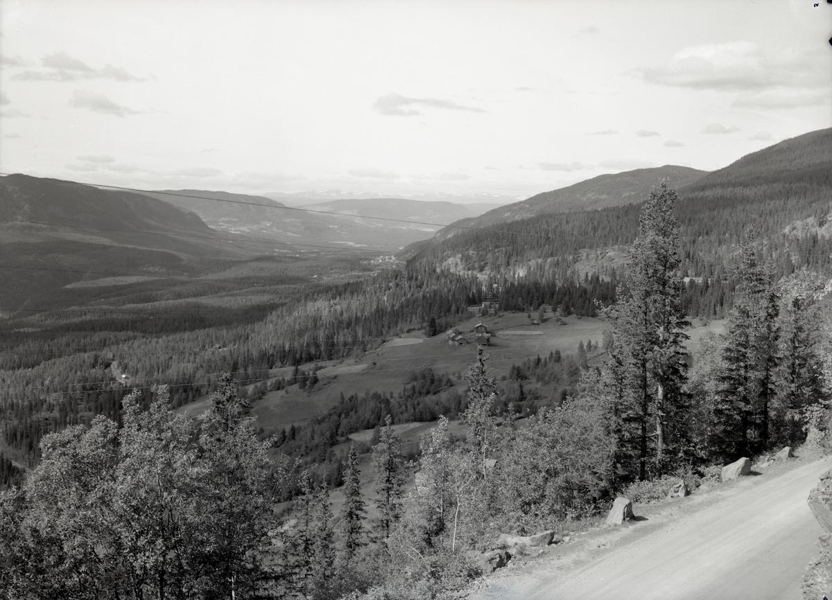 Utsikt fra Tonsåsen mot Aurdal.
