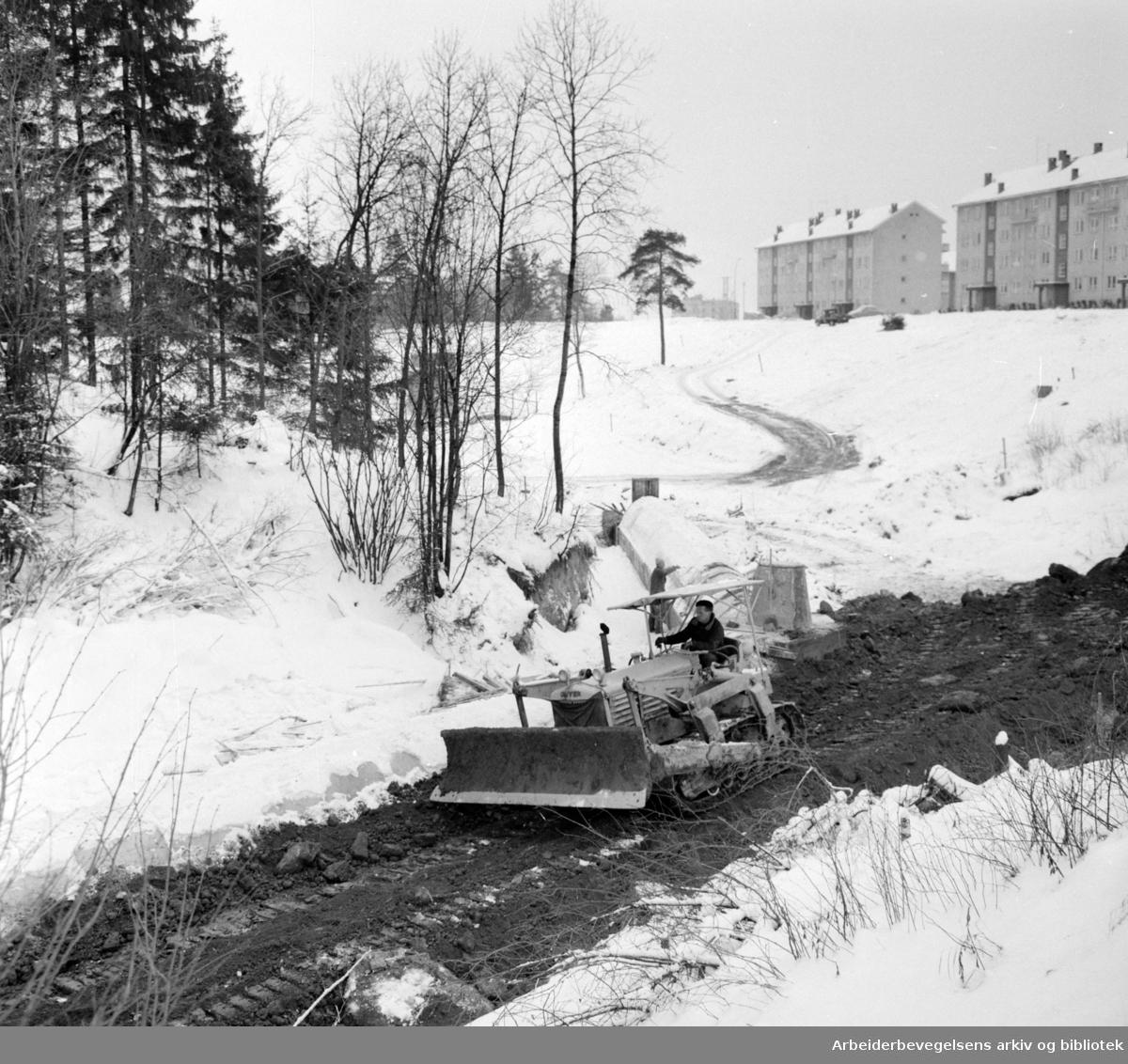 Tonsen: Badedammen under arbeid. Januar 1961