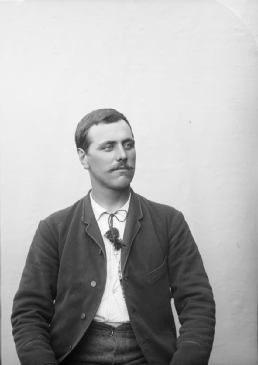 Portrett av Ole Haugsmoen