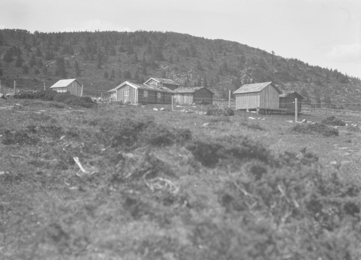 Ringebu. Gamle seterhus kalt Siklesetra, som ligger i området Skotten.