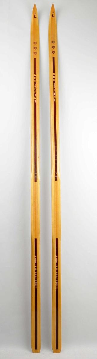 Langrennski laga av tre. Lakkera trekvit overflate med brun dekorstripe og tre gullmedaljar/snøstjerner framme på skia.