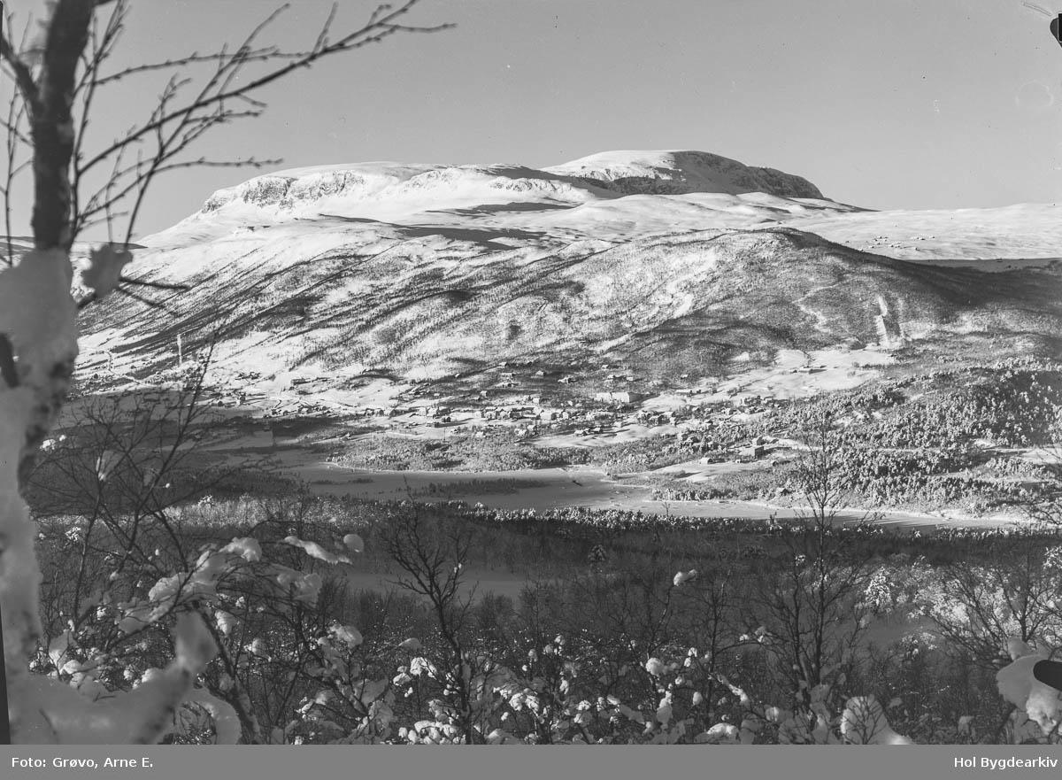 Tettstad, Geilo, vinter, Hallingskarvet, Ustedalen,