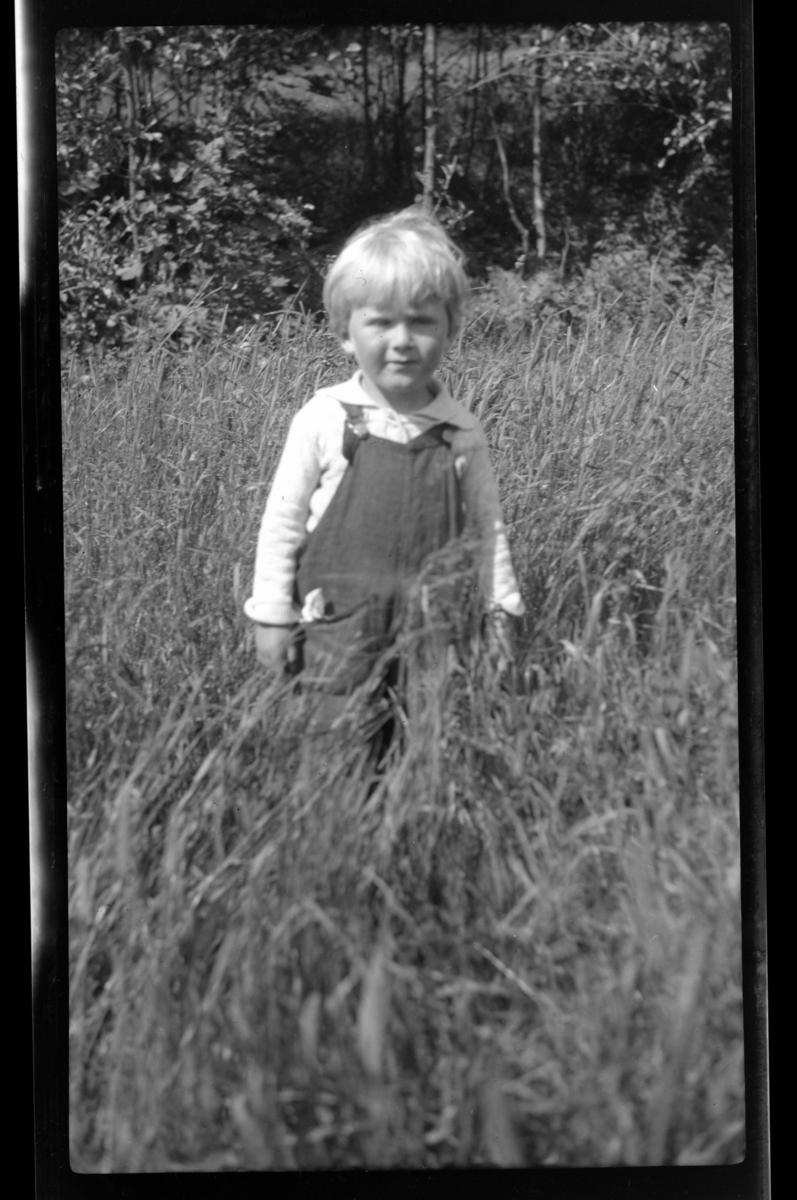 Lars Peter Sundt i høyt gress ved Ula i Vestfold. Fotografert 1932.