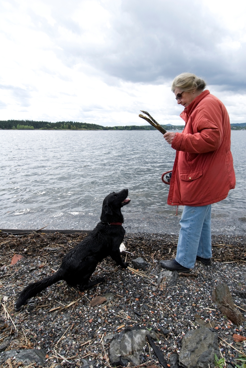 Hunden Chico på tur leker med pinne sammen med sin eier.