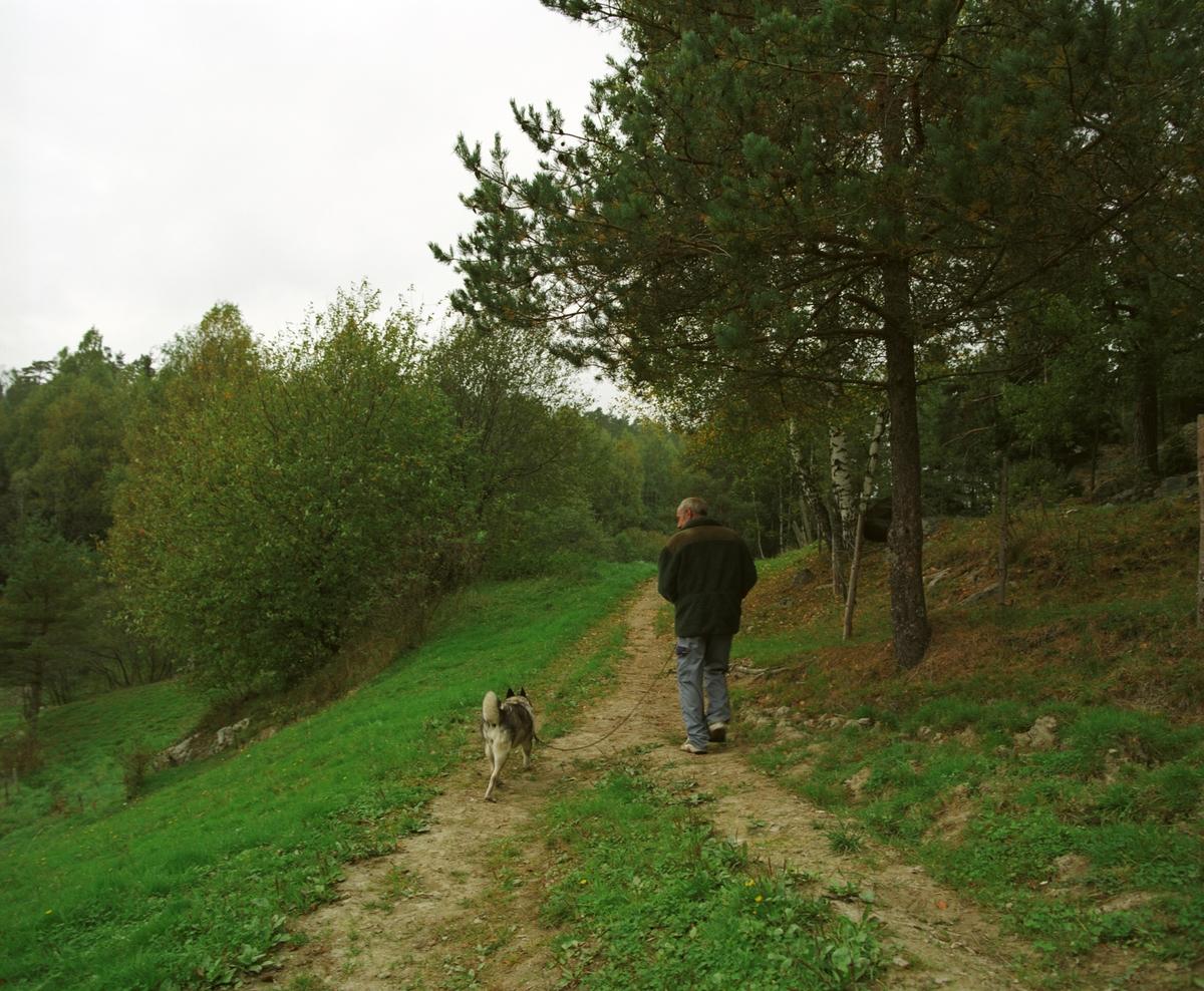 Elghund på tur i line med sin eier