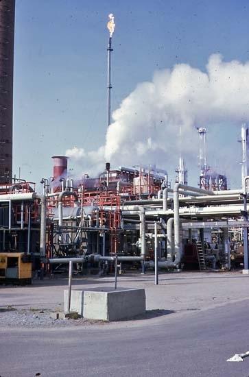 1979. Facklan.