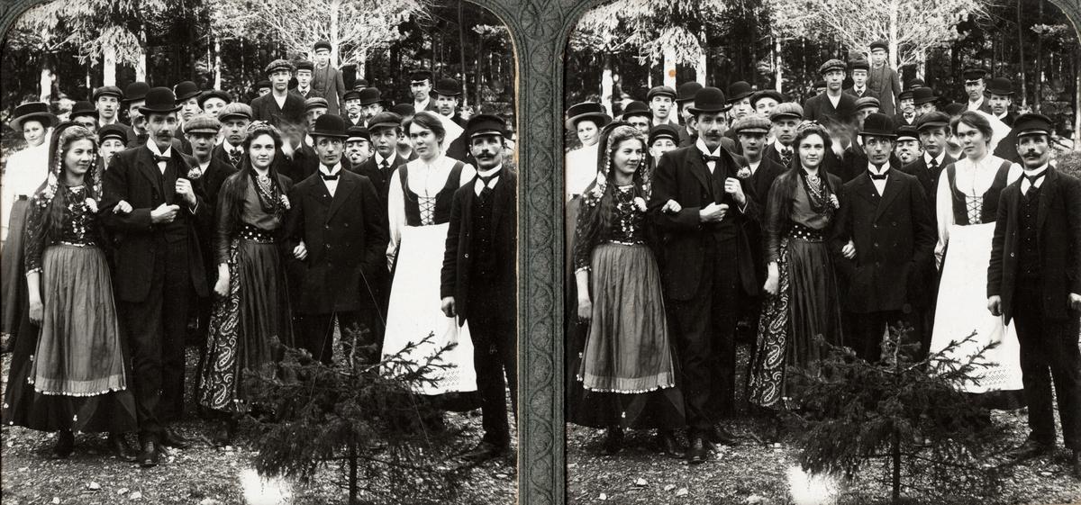 Stereobild. Folkets Park, Kohlsva Bruk, tidigt 1900-tal.